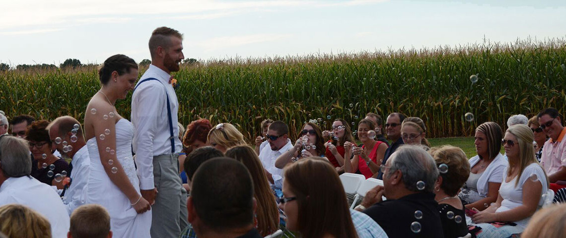 Wedding in a cornfield
